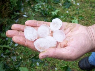 Vanmiddag kwamen joekels van hagelstenen uit de lucht in het oosten ...: frontpage.fok.nl/nieuws/94345/-Veel-schade-door-onweer-en-hagel-in...