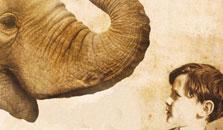 Christopher Nicholson - Tom Page & his Elephant