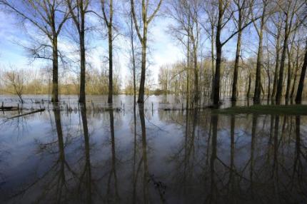 Waterschap vreest derde hoogwatergolf Maas