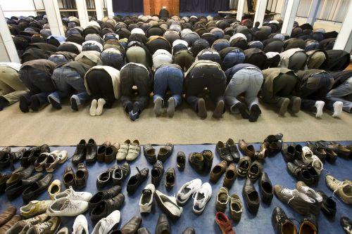 Biddende moslims
