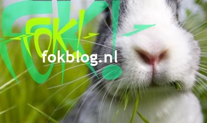 FOK!Weblog2