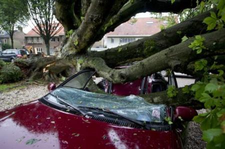 Brabantse gemeenten druk met stormschade