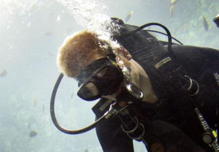 Nederlandse duikers vermist in Duits meer
