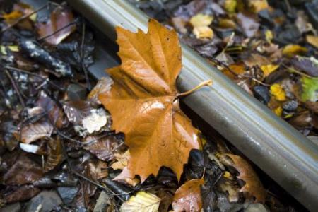 Vallende bladeren, glijdende treinen