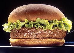 Hamburger (bron: Wikimedia, foto: Len Rizzi , licentie: publiek domein)