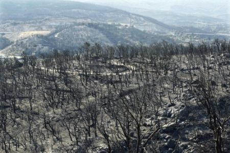 Bosbrand Catalonië onder controle