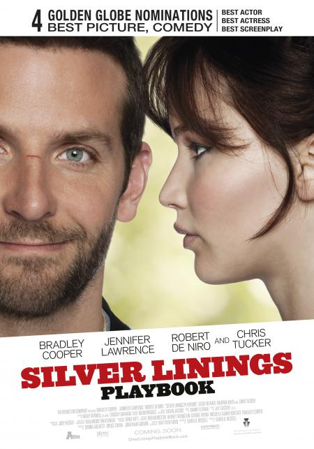 Silver Linings Playbook (28-02-2013)