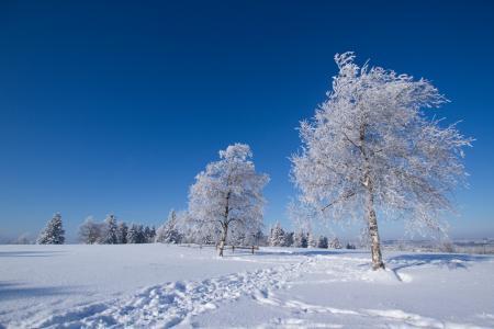 Winterberg/Kahler Asten