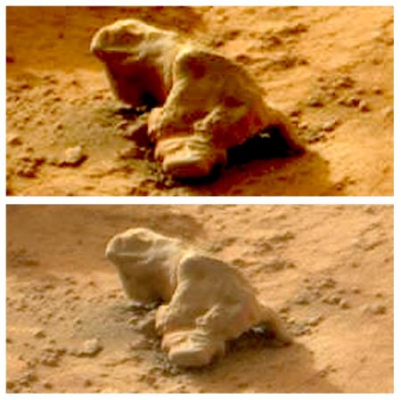 Leguaan op Mars