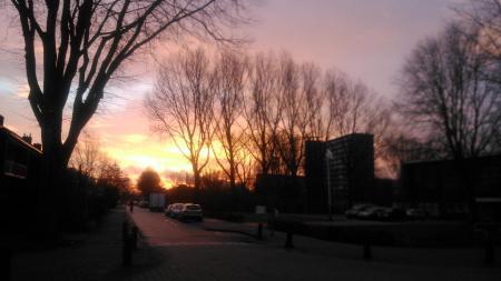 weerfoto's donderdag 16 januari (Foto: djmo)