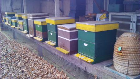 Bijenkasten (en korf) van Bos