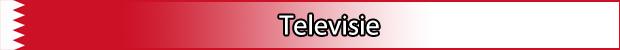 Televisie bahrein