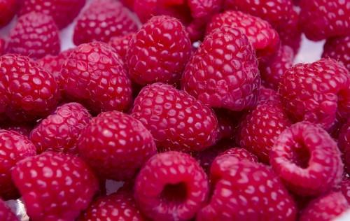 Driekwart Nederlanders eet ongezond