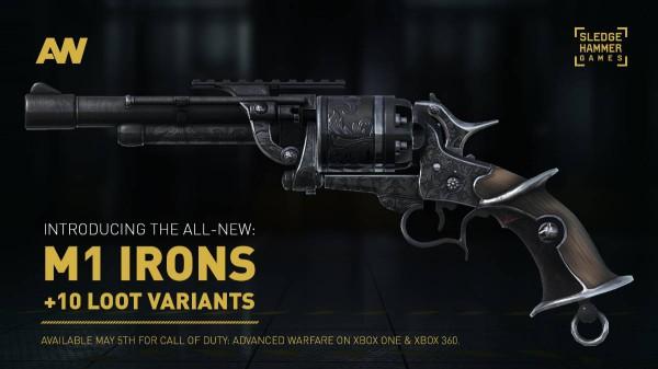 Advanced Warfare M1 Irons