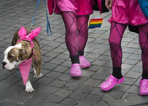 Maastricht hele dag roze