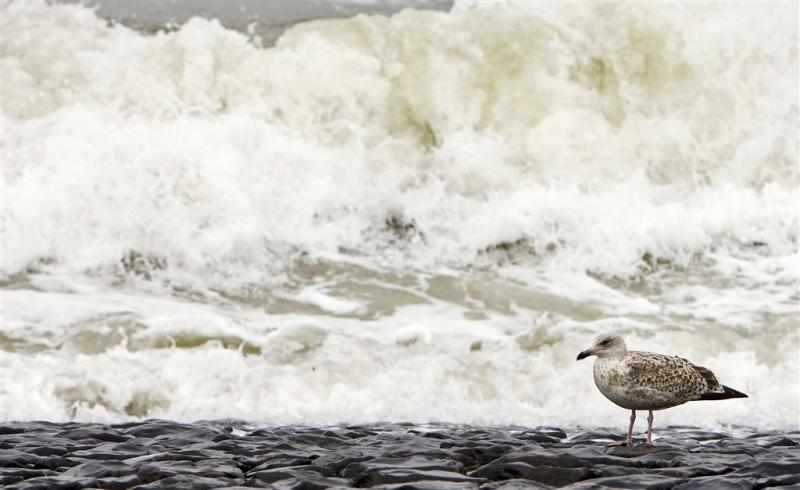Opwarming zeewater is onomkeerbaar proces