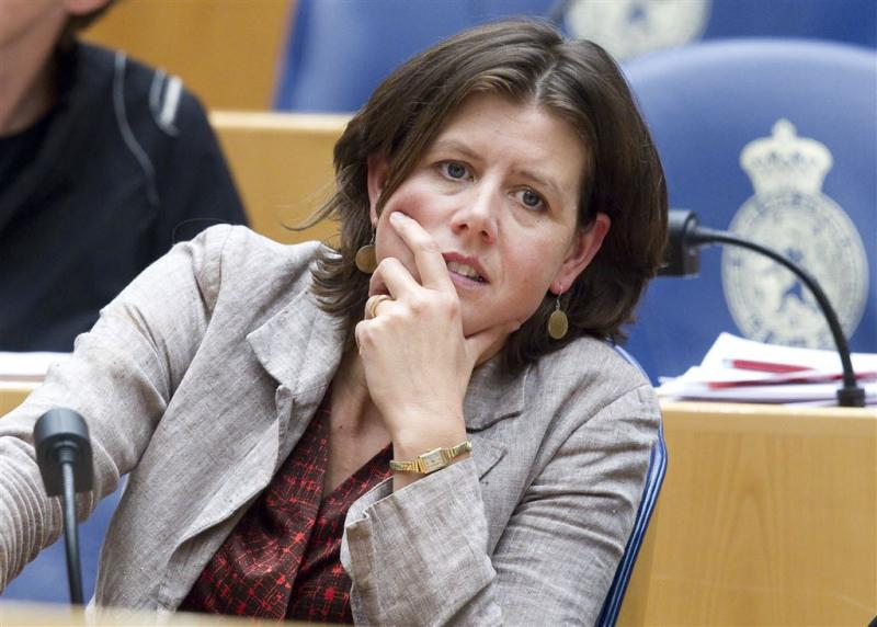 VVD en PvdA oneens over aanpak vakenssector