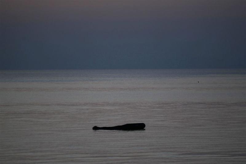 28 vluchtelingen verdronken voor Griekse kust