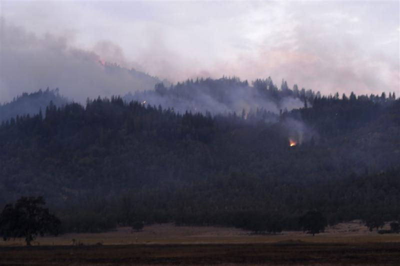 Bosbranden Californië verder teruggedrongen