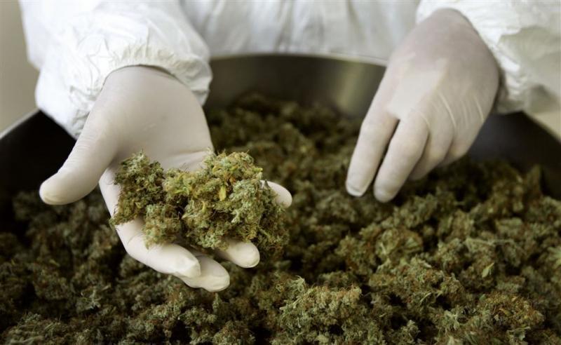 Cannabis veel vaker over de toonbank apotheek