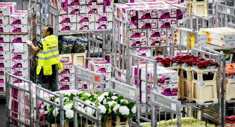 Export bloemen en planten blijft groeien