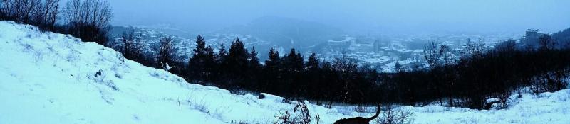 Veliko Tarnovo in de sneeuw  (Foto: Dven)