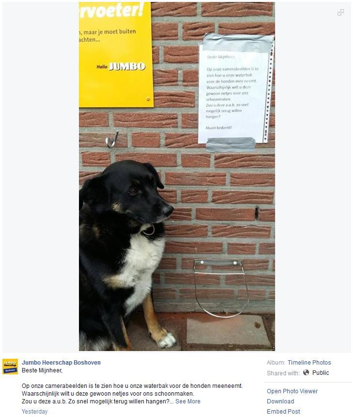 Facebookpost over de gestolen drinkbak (Foto: Jumbo Bashoven))