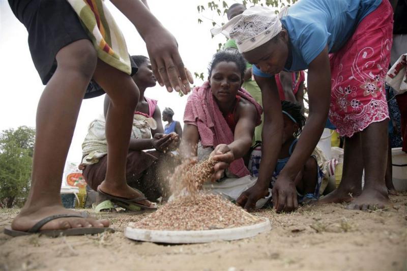 Noodtoestand Zimbabwe om droogte