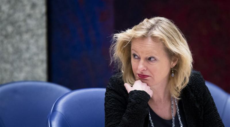 Geen vuist EU voor vrouwen en homo's