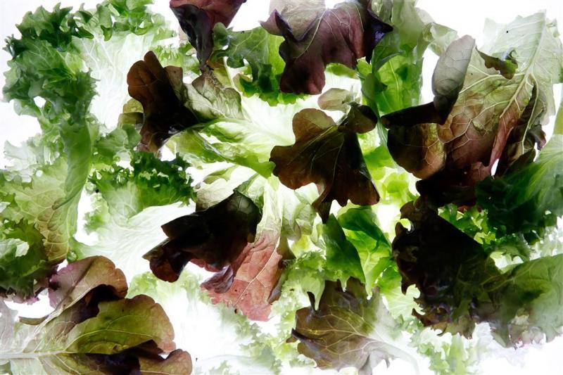 Schijf van Vijf: meer groente, minder vlees