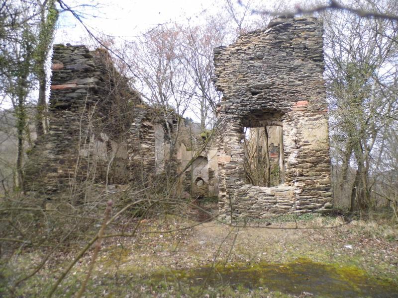 Bezoek aan Ruine Waldeck (foto: qltel)