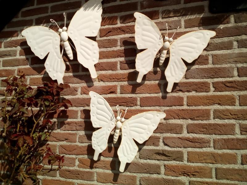 Oukitel K10000 camera vlinders