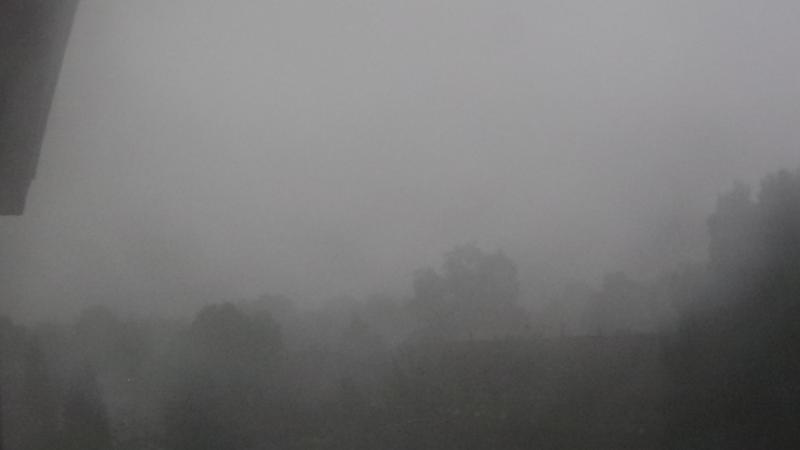 Regen in Arnhem (Foto: DP026)