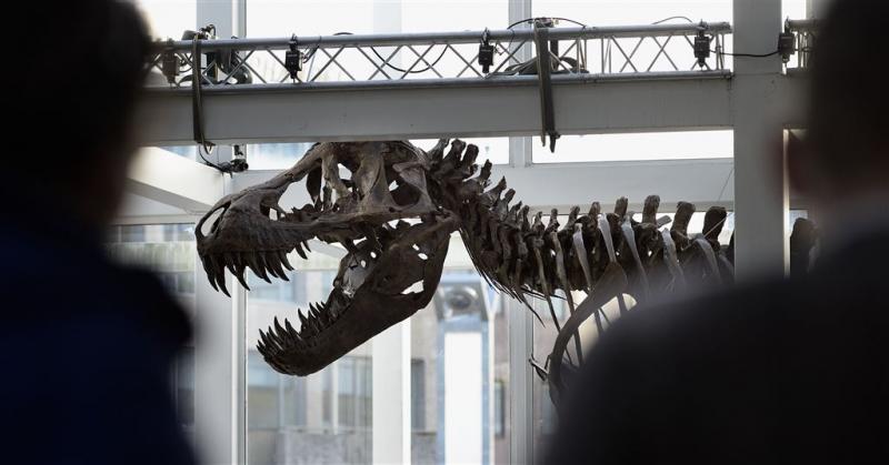 T. rex in Naturalis is Trix gedoopt