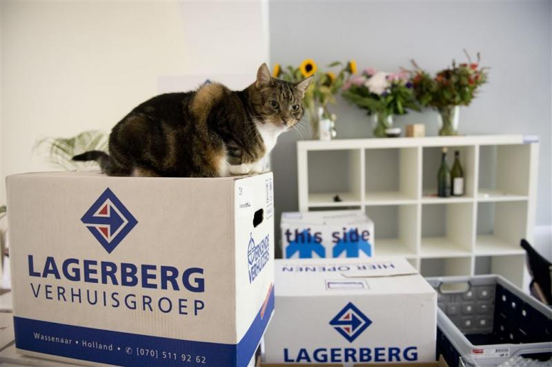 ABN AMRO verwacht flinke groei woningverkopen