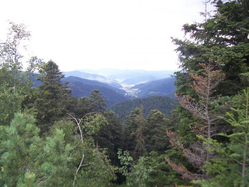 Uitzicht in het Zwarte Woud (Foto: qltel)