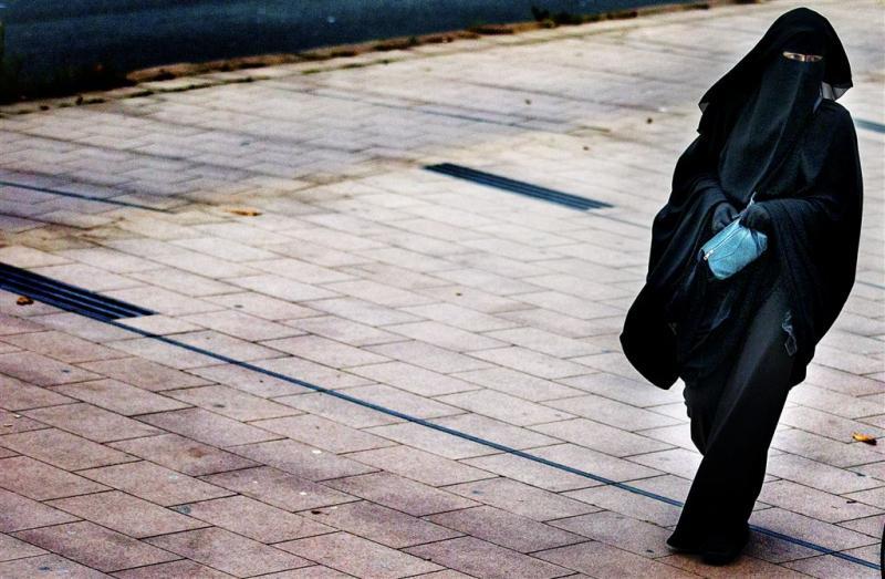Duitse regering wil beperkt boerkaverbod