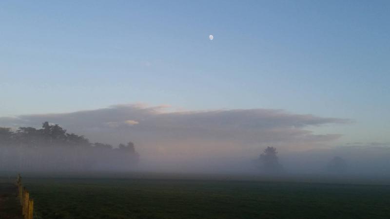 Prachtige zonsopkomst in Seaward Downs (Nieuw Zeeland)  (Foto: RechtseDirecte)