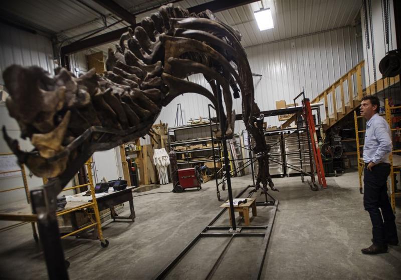 T. rex wordt in Leiden als heldin onthaald