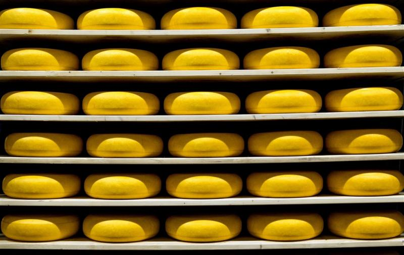 Melkoverschot drukt winst FrieslandCampina