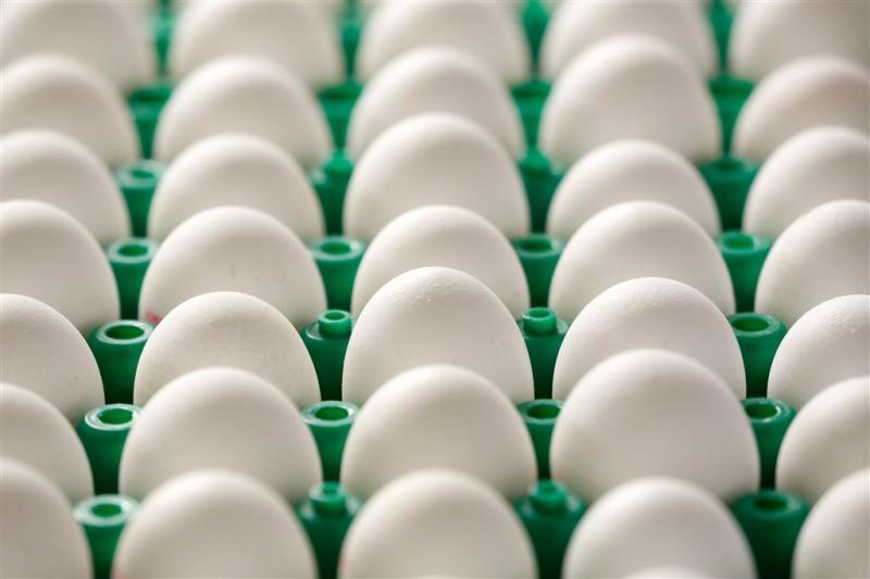 Stank van rotte eieren in Rotterdamse wijk