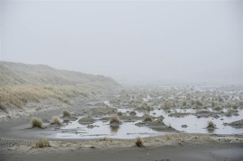 'Zuid-Hollands duingebied als Nationaal Park'