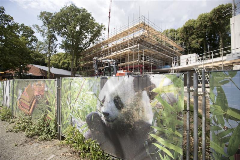 Komst reuzenpanda's naar Rhenen uitgesteld