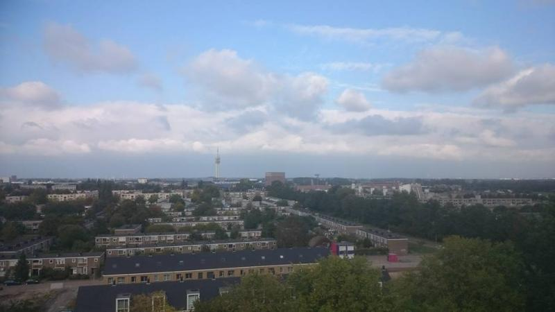 Eentonig weertje in Haarlem (Foto: Stephan5)