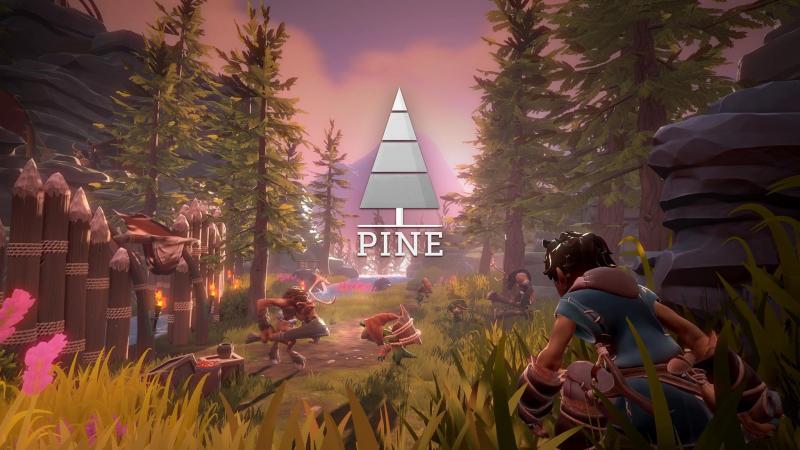 Pine - Overzicht