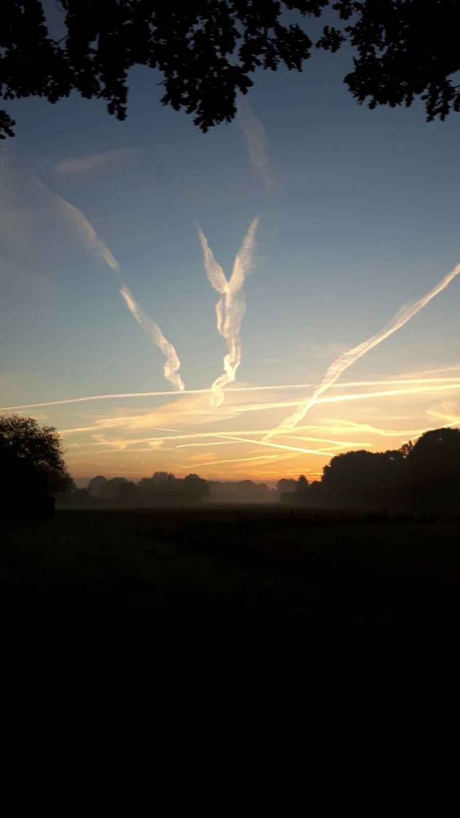 Mist(archief)foto in de buurt van Varsseveld