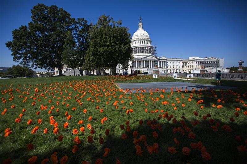 Congres wordt cruciaal voor nieuwe president