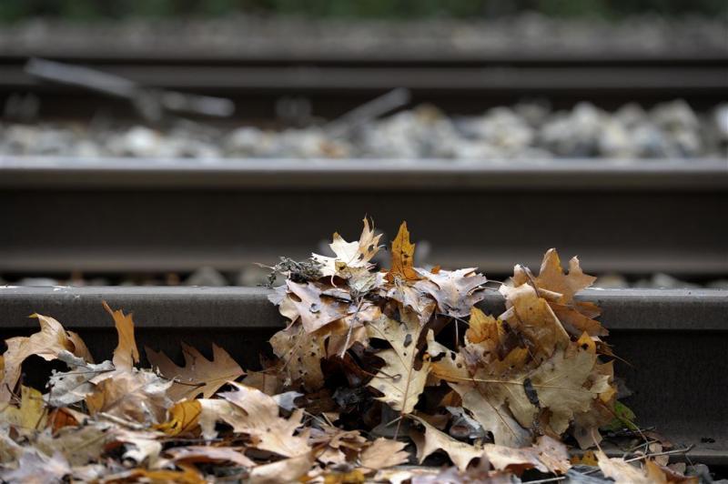 Herfstweer doet zich weer voelen op spoor