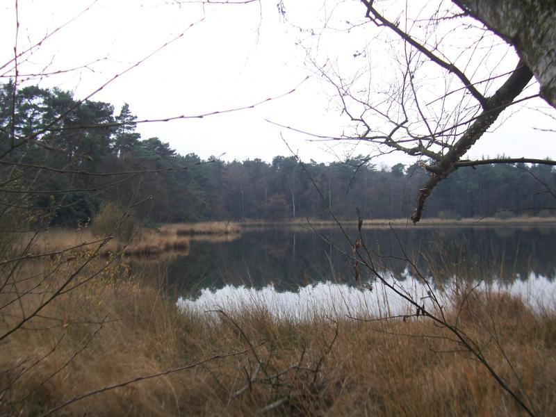 Wandeling rond het Groote meer in de gemeente Woensdrecht (Foto: qltel)