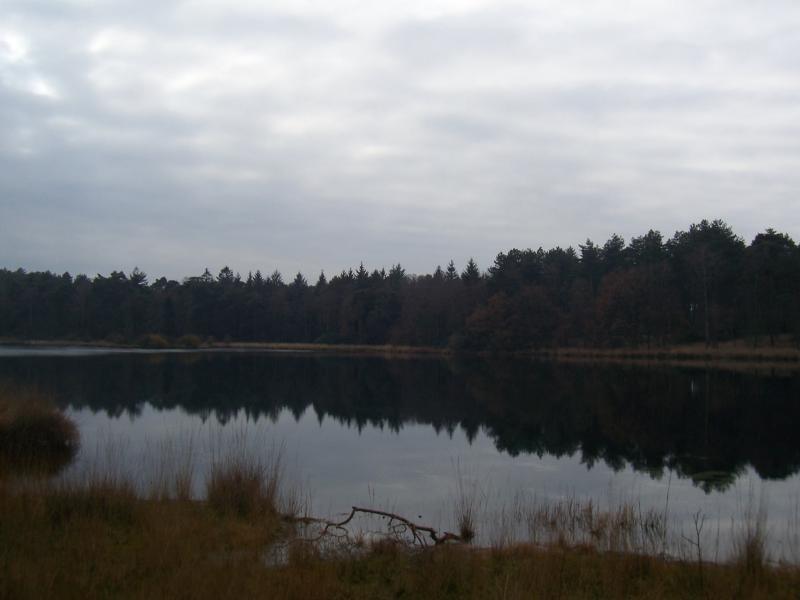 Wandeling rond de Groote meer in de gemeente Woensdrecht (Foto: qltel)